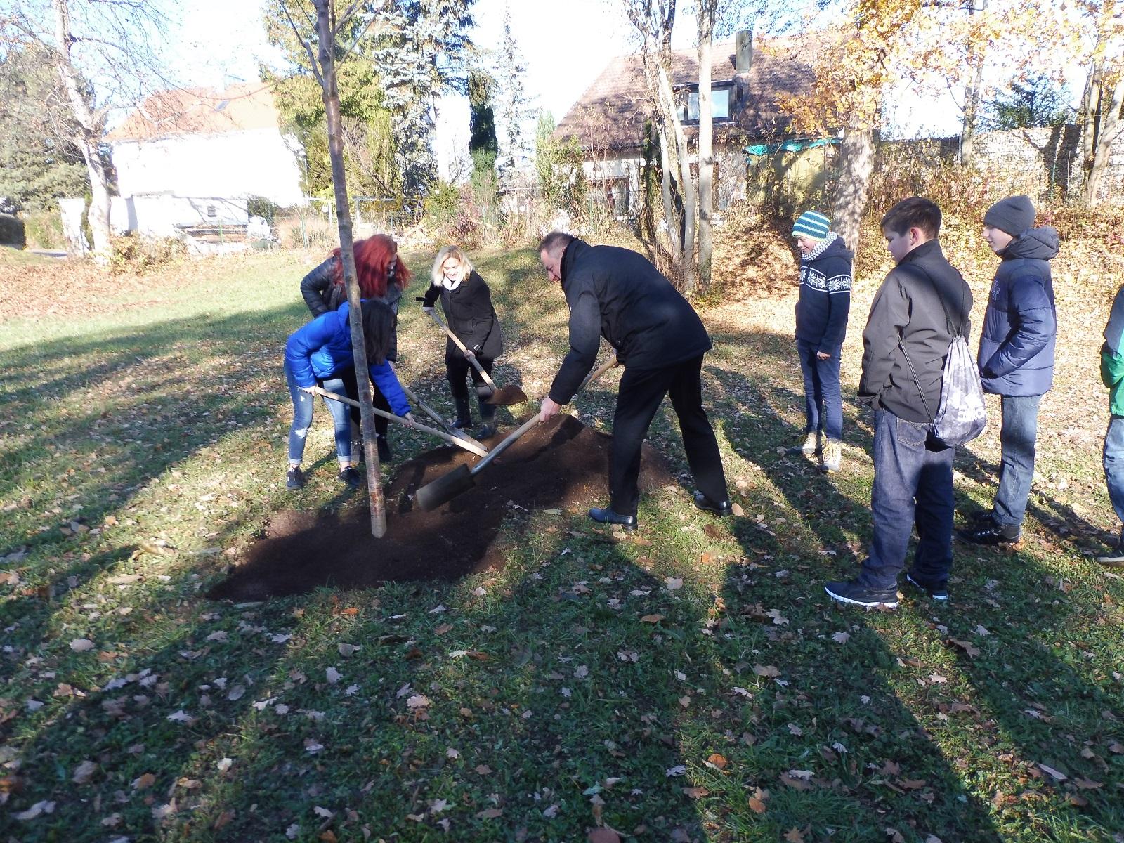 Baumpflanzung von Jugendlichen auf dem Friedhof in Ötlingen am Volkstrauertag 18.11.2018