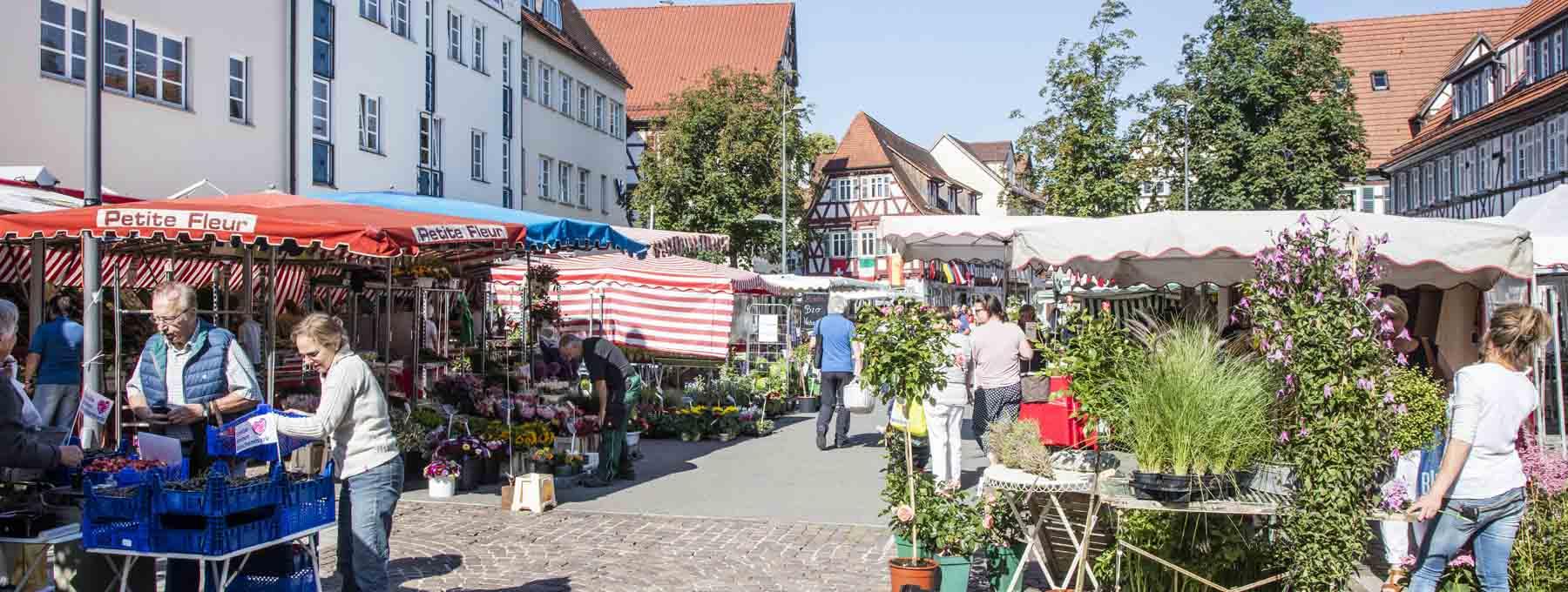 Markt in Kirchheim unter Teck