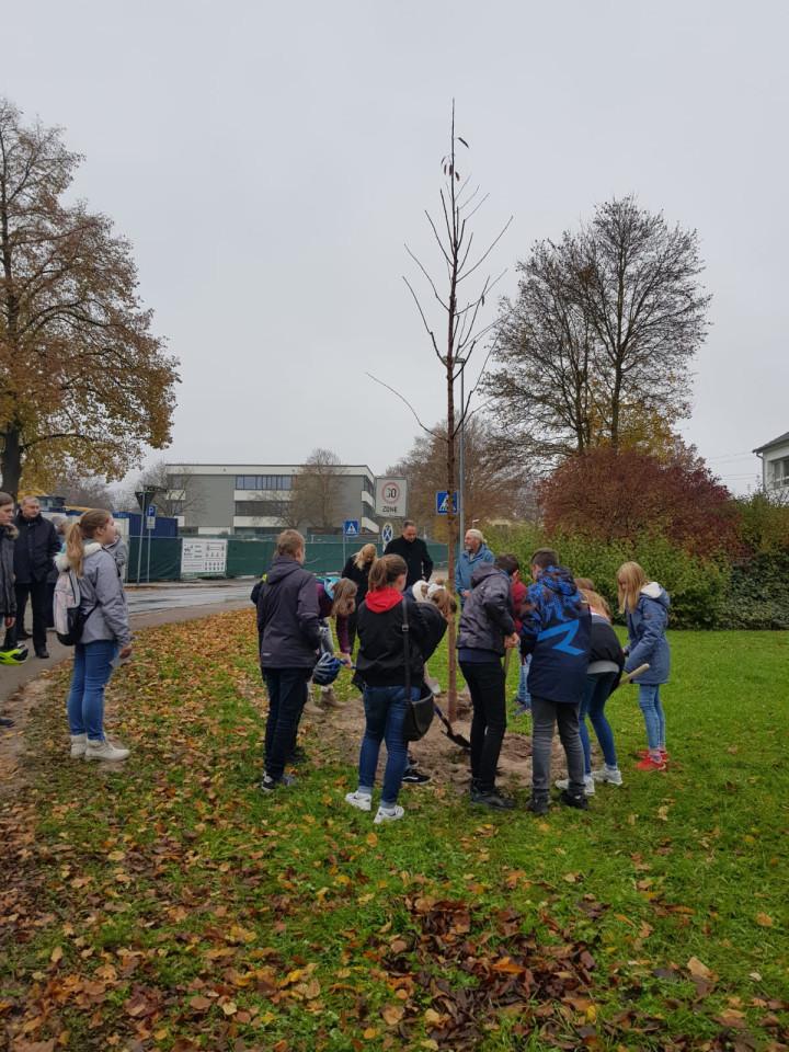 Volkstrauertag 2019 Baumpflanzung in der Friedensallee an der Lindorfer Straße