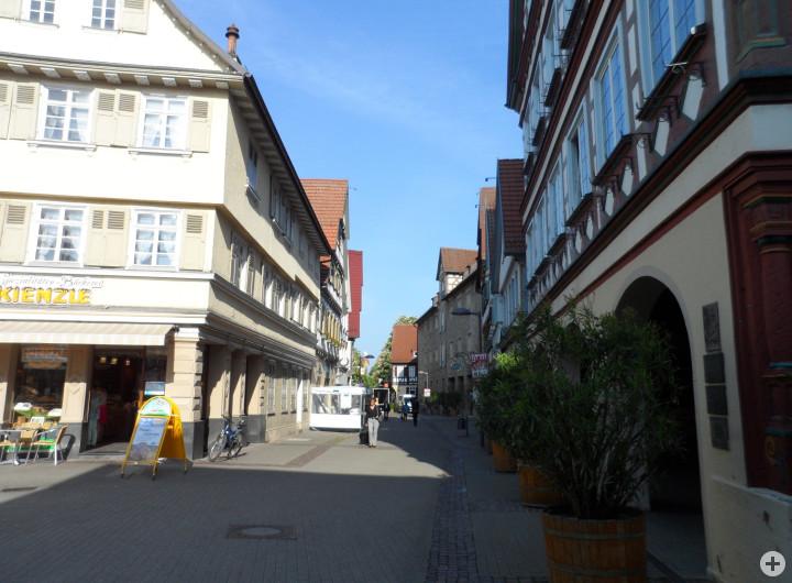 w Max-Eyth-Straße 2
